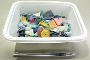 海鳥が誤食してしまうプラスチックの量を人間に置き換えたらこの量